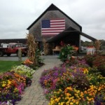 Farm stand in fall